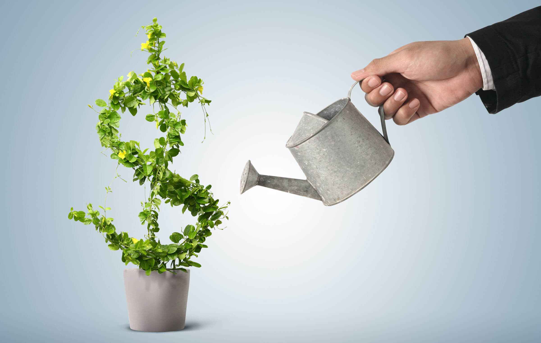 Мелкие инвестиции в интернете: от 1 и 100 рублей