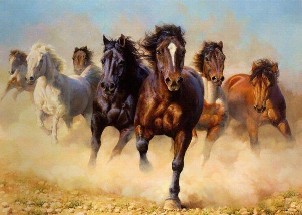 табунное коневодство